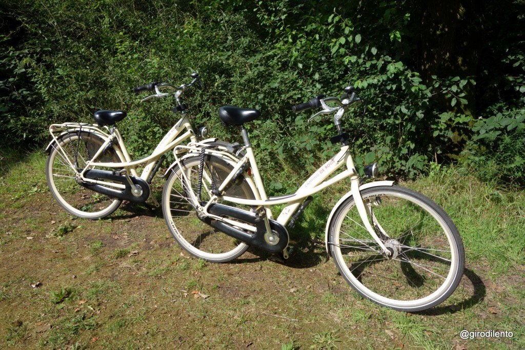 The Camping de Roos hire bikes